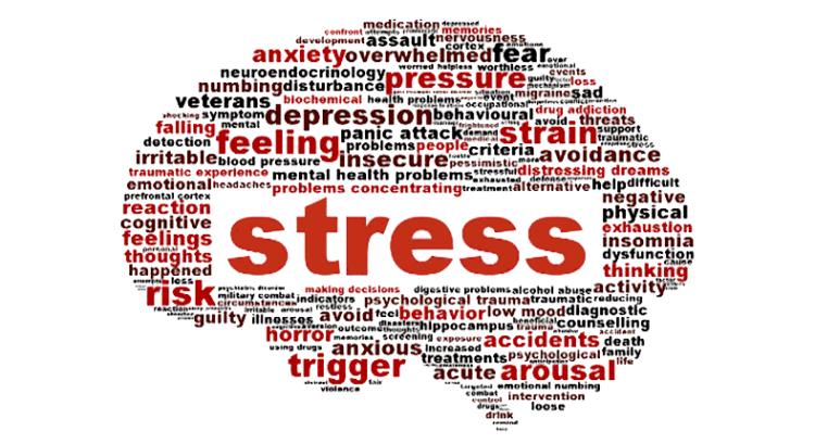 StressBrain